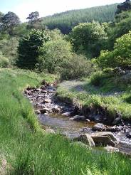 River Management Project on the Isle of Man