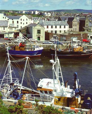 Peel Harbour