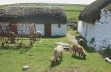 Karran's Farmstead at the National Folk Museum, Cregneash