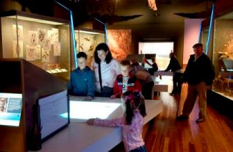 Visitors exploring Manx National Heritage's Natural History