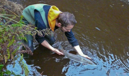 River anglers encouraged to submit catch return forms