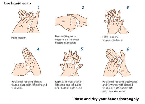 Handwashing infographic