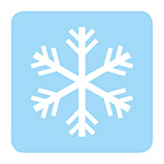 Winter health snow flake