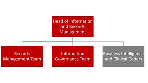 Information and Records Flow (v2)