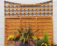 Manx Larch Lap & Trellis Panels