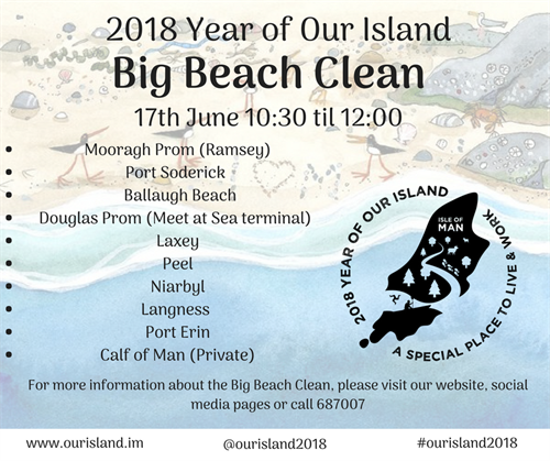 Big Beach Clean Poster
