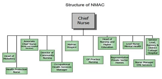 Structure of the NMAC